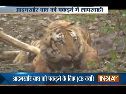 Controversial video raises question over tiger rescue operation in Nanital