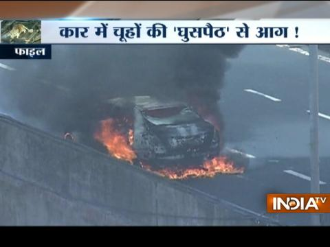 Fire brigade department blame rats for cars frequently catching fire in Mumbai