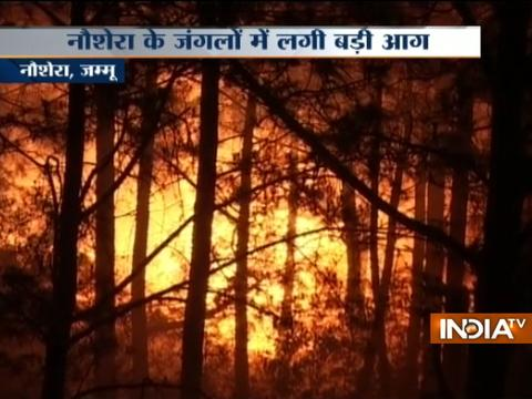 Forest fire in Naushera village