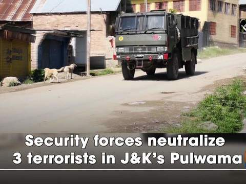 Security forces neutralize 3 terrorists in JandK's Pulwama
