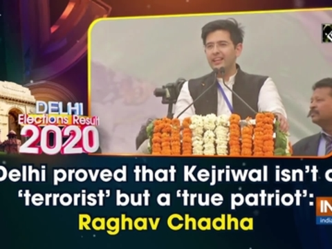 Delhi proved that Kejriwal isn't a 'terrorist' but a 'true patriot': Raghav Chadha