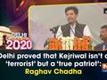 Delhi proved that Kejriwal isn't a 'terrorist' but a 'true patriot': Raghav Chadha