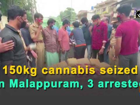 150kg cannabis seized in Malappuram, 3 arrested