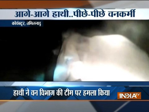 Caught On Camera: Elephant attacks forest staff in Coimbatore
