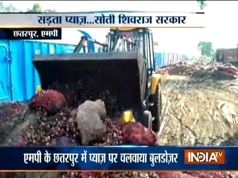 Onion Rotting at Mandis, MP govt decides to dump produced