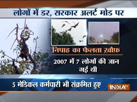 Nipah virus: Madhya Pradesh Health Ministry issues advisory for people