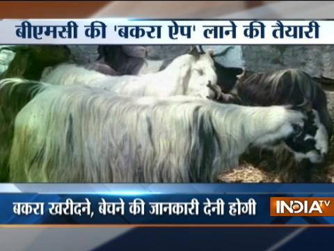 Bakra Eid Latest News, Photos and Videos - India TV News