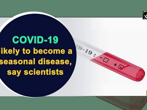 COVID-19 likely to become a seasonal disease, say scientists