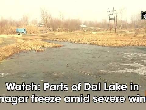 Watch: Parts of Dal Lake in Srinagar freeze amid severe winter