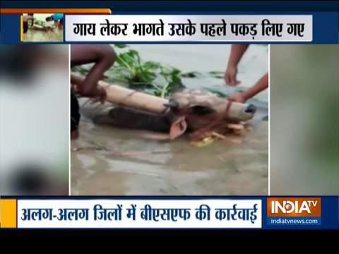 पश्चिम बंगाल: मालदा में बीएसएफ ने अंतरराष्ट्रीय पशु तस्करी रैकेट का किया भंडाफोड़, 3 गिरफ्तार