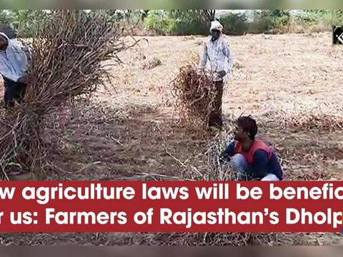 New agriculture laws will be beneficial for us: Farmers of Rajasthan's Dholpur