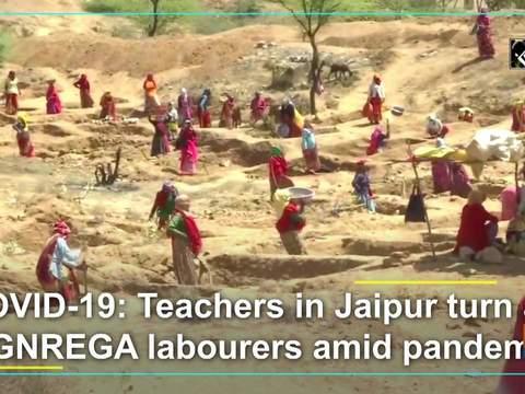 COVID-19: Teachers in Jaipur turn as MGNREGA labourers amid pandemic