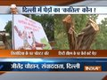 Poster war in Delhi over culling of hundreds of trees