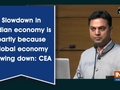 Slowdown in Indian economy is partly because global economy slowing down: CEA