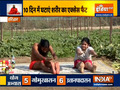 Do these yogasans daily to lose weight, know right way to do them from Swami Ramdev