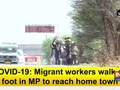 COVID-19: Migrant workers walk on foot in MP to reach home town