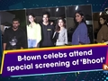 B-town celebs attend special screening of 'Bhoot'