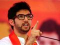 Maharashtra Polls: Will the first Thackeray in election ring register victory?