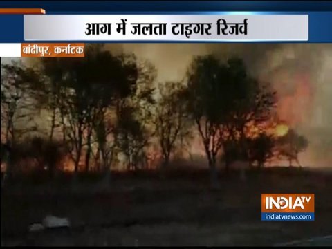 Karnataka: Major fire in Bandipur Tiger Reserve, several wildlife species threatened