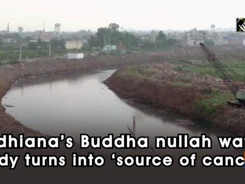 Ludhiana's Buddha nullah water body turns into 'source of cancer'