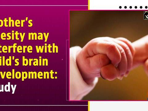 Mother's obesity may interfere with child's brain development: Study