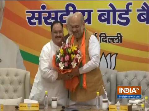 जेपी नड्डा भारतीय जनता पार्टी के कार्यकारी अध्यक्ष चुने गए