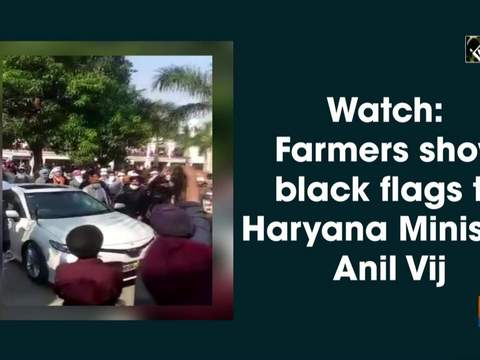 Watch: Farmers show black flags to Haryana Minister Anil Vij