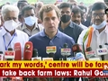 'Mark my words,' centre will be forced to take back farm laws: Rahul Gandhi