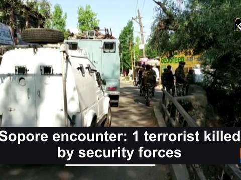 Sopore encounter: 1 terrorist killed by security forces