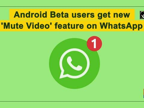 Android Beta users get new 'Mute Video' feature on WhatsApp