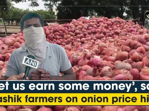 'Let us earn some money', say Nashik farmers on onion price hike