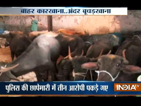 Illegal slaughter house busted in Thane, 3 held