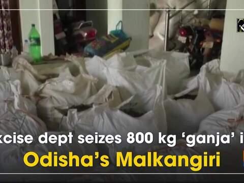 Excise dept seizes 800 kg 'ganja' in Odisha's Malkangiri