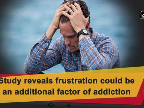 Study reveals frustration could be an additional factor of addiction