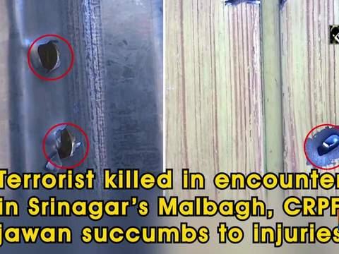 Terrorist killed in encounter in Srinagar's Malbagh, CRPF jawan succumbs to injuries