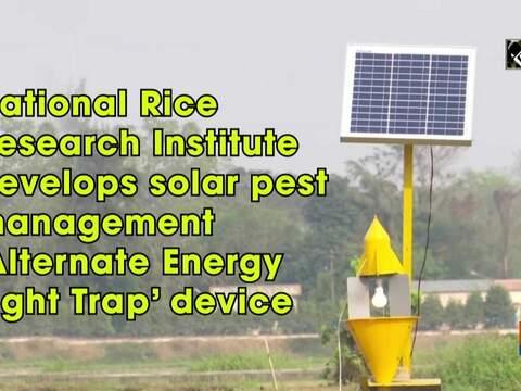 National Rice Research Institute develops solar pest management 'Alternate Energy Light Trap' device