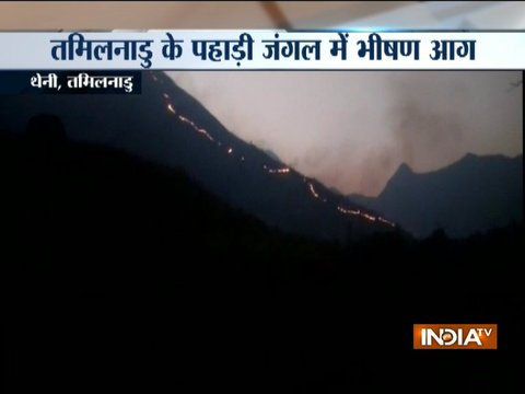 Tamil Nadu: One dead, 12 rescued in Theni forest fire