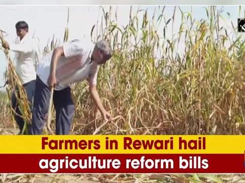 Farmers in Rewari hail agriculture reform bills