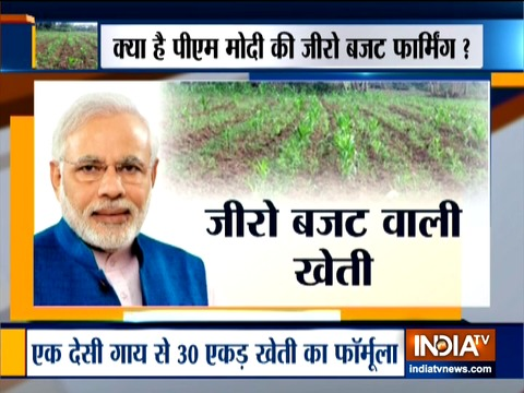 मोदी सरकार ने 'जीरो बजट प्राकृतिक खेती' पर ध्यान केंद्रित किया