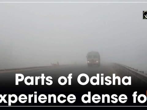 Parts of Odisha experience dense fog