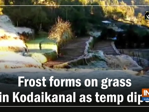 Watch: Frost forms on grass in Kodaikanal as temp dips