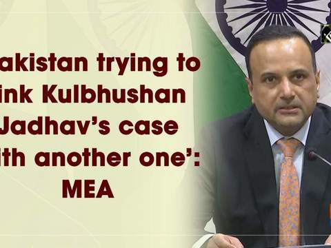 'Pakistan trying to link Kulbhushan Jadhav's case with another one': MEA
