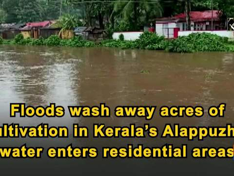 Floods wash away acres of cultivation in Kerala's Alappuzha, water enters residential areas
