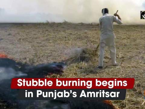 Stubble burning begins in Punjab's Amritsar
