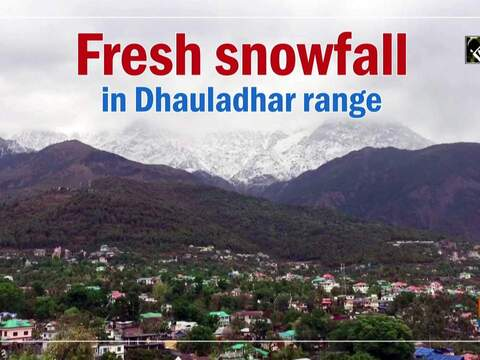 Fresh snowfall in Dhauladhar range