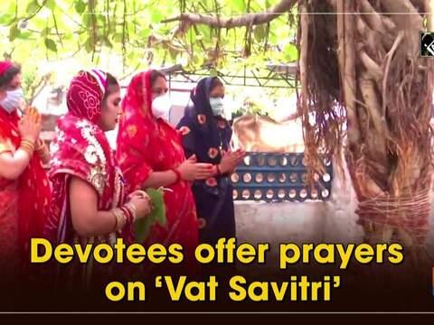 Devotees offer prayers on 'Vat Savitri'