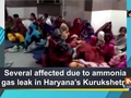 Several affected due to ammonia gas leak in Haryana's Kurukshetra