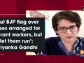 'Put BJP flag over buses arranged for migrant workers, but let them run': Priyanka Gandhi