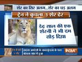 Speeding train kills 3 lions in Amreli district of Gujarat