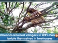 Chennai-returned villagers in WB's Purulia isolate themselves on treehouses